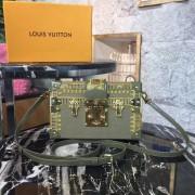 Louis Vuitton M51600-green