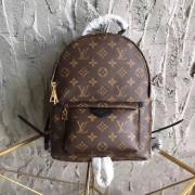 Louis Vuitton M41560 Palm Springs Backpack PM Monogram