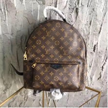 Louis Vuitton M41561 Palm Springs Backpack MM Monogram