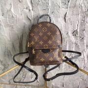 Louis Vuitton M41562 Palm Springs Mini Backpack Monogram